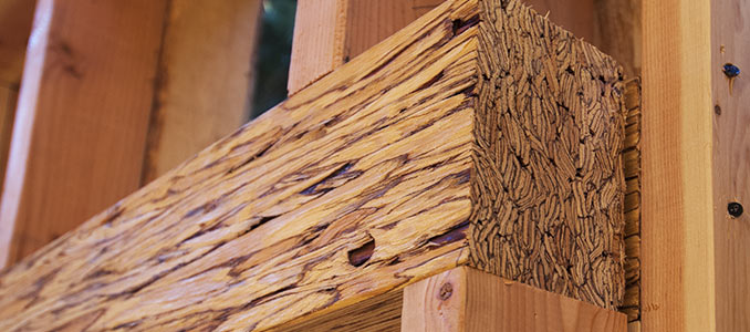 Detail of engineered lumber being used to support a heavy load over a doorway in framing construction