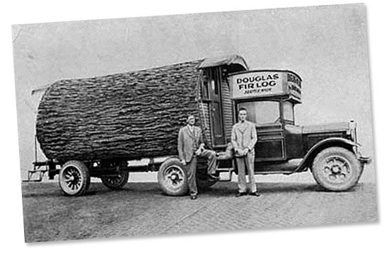 A hollowed out Douglas Fir log serves as an office on a truck in this vintage photo