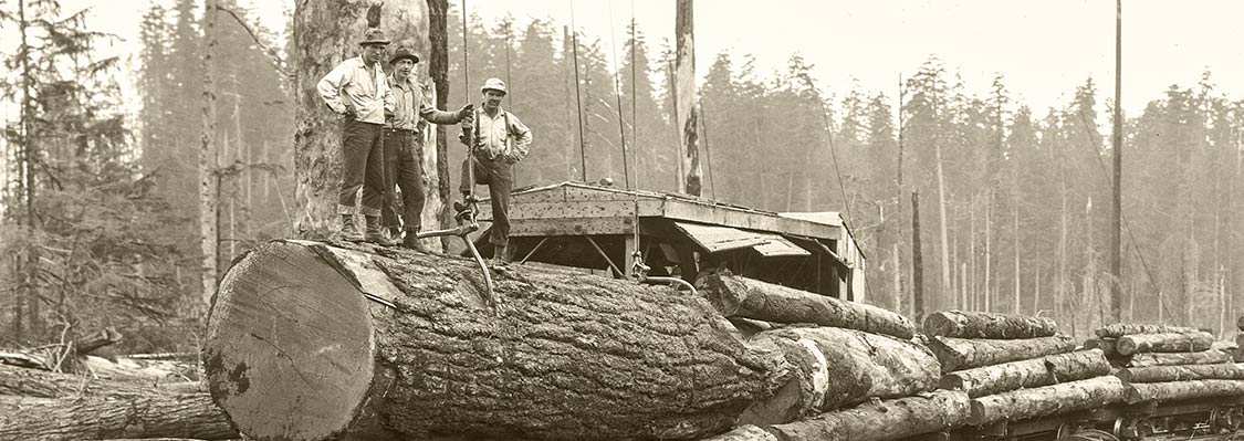 Old photo showing loggers standing atop a large log after it had been loaded on a rail car